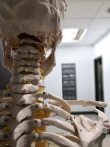 ostéopathie, corps, douleur, prevention
