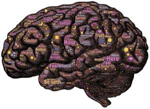 cerveau et croyances